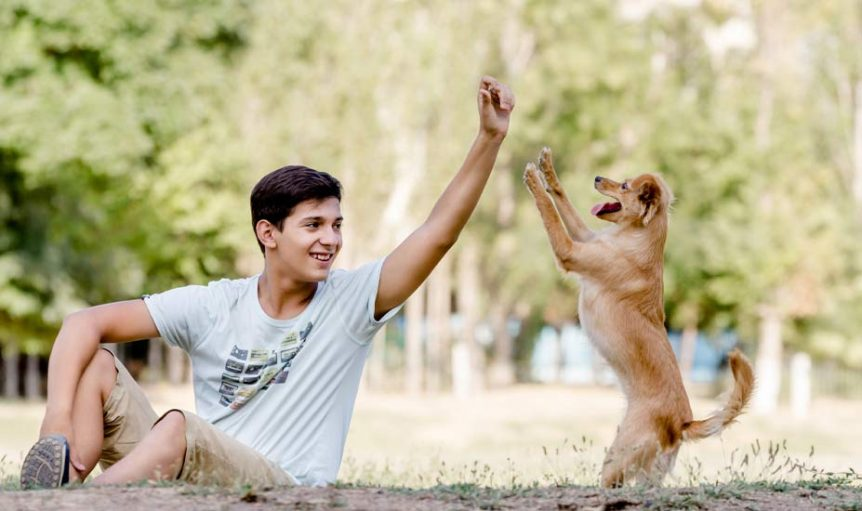 Teen Playing With Dog